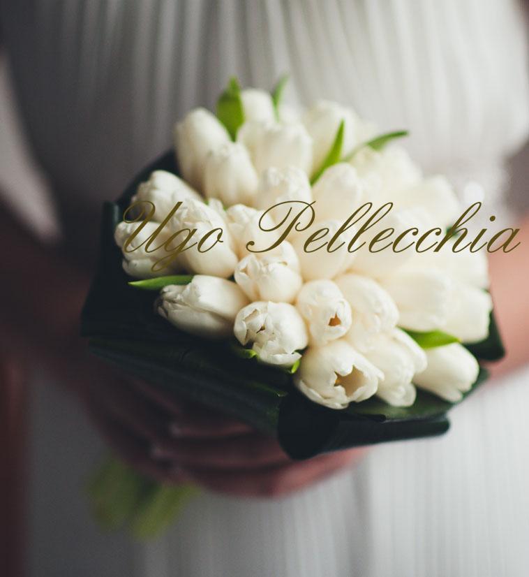 Bouquet Sposa Gelsomino.Bouquet Sposa Ugo Pellecchia Piante E Fiori