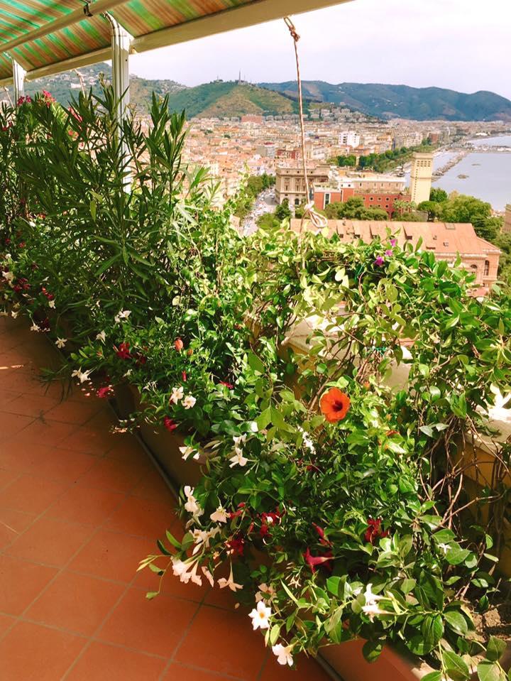Terrazzi e giardini for Giardini e terrazzi