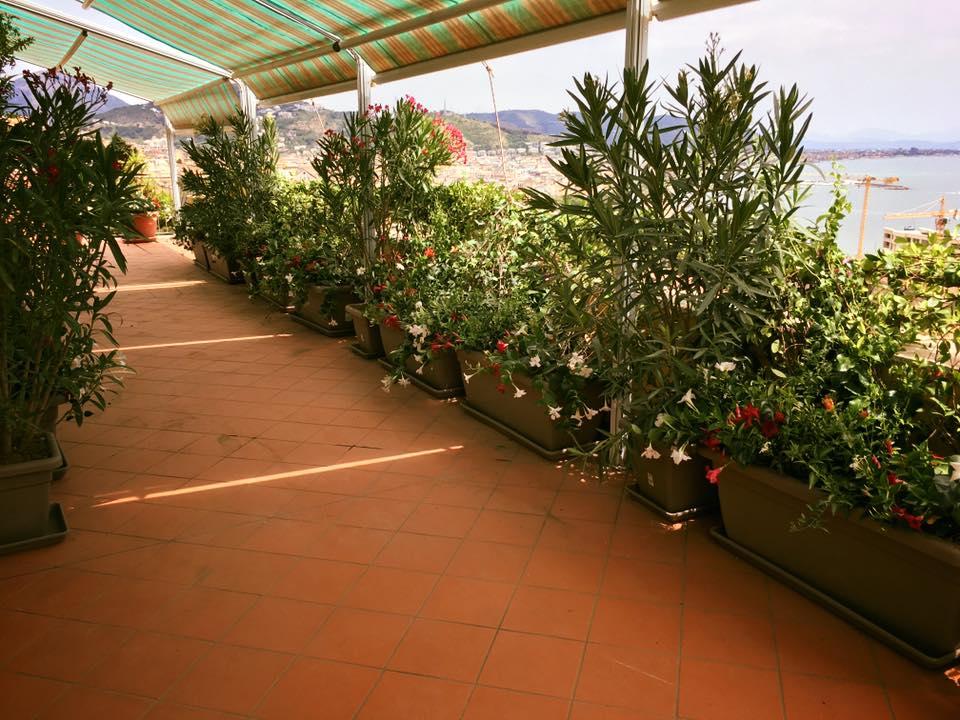 Terrazzi e giardini ciavattini garden terrazzi e giardini for Giardiniere milano
